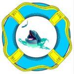 Нептун, ООО
