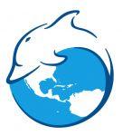 Дельфины, ООО