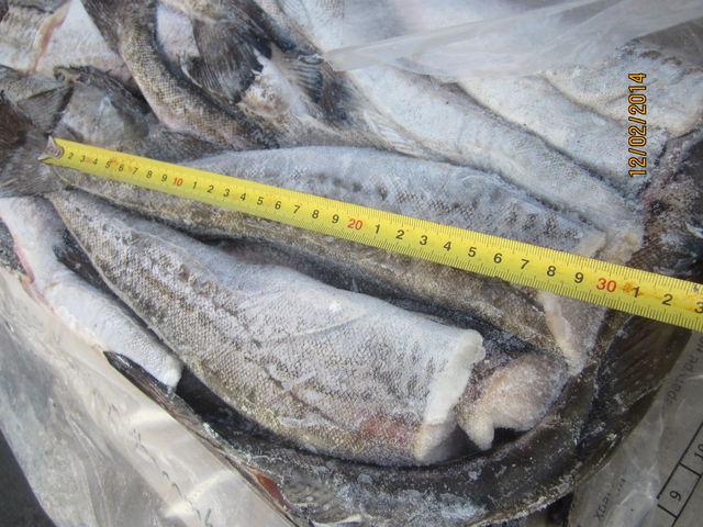 Продам: минтай, мороженая рыба Дальний Восток в Москве