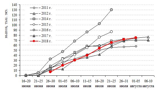 Рисунок 3 – Нарастающий вылов мейныпильгынской нерки в 2011–2018 гг.