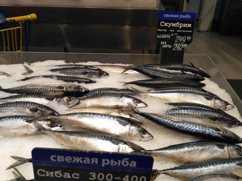 Цена: скумбрия непотр охл вес Россия