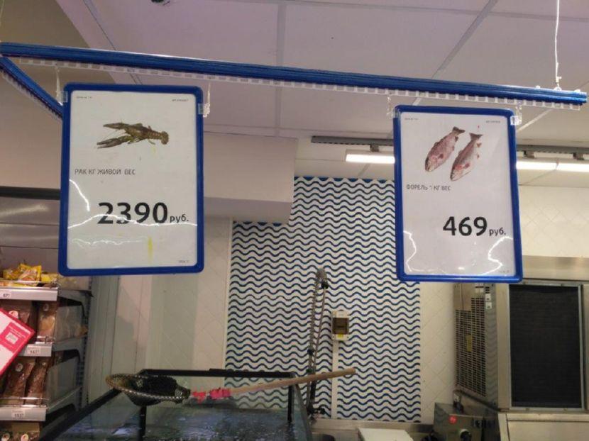 Цена:рак кг живой вес, форель