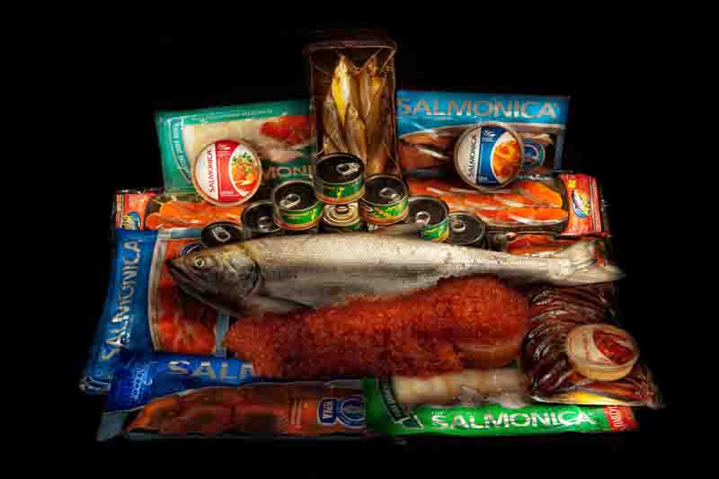 Группа компаний «Salmonica»