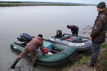 Массовый ход симы – массовое браконьерство
