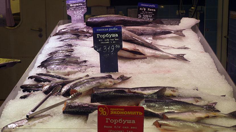Цена: Горбуша б/г потр.охл. /Ассортимент охлажденной рыбы и рыбных консервов в гипермаркете «Лента»  г. Санкт-Петербург