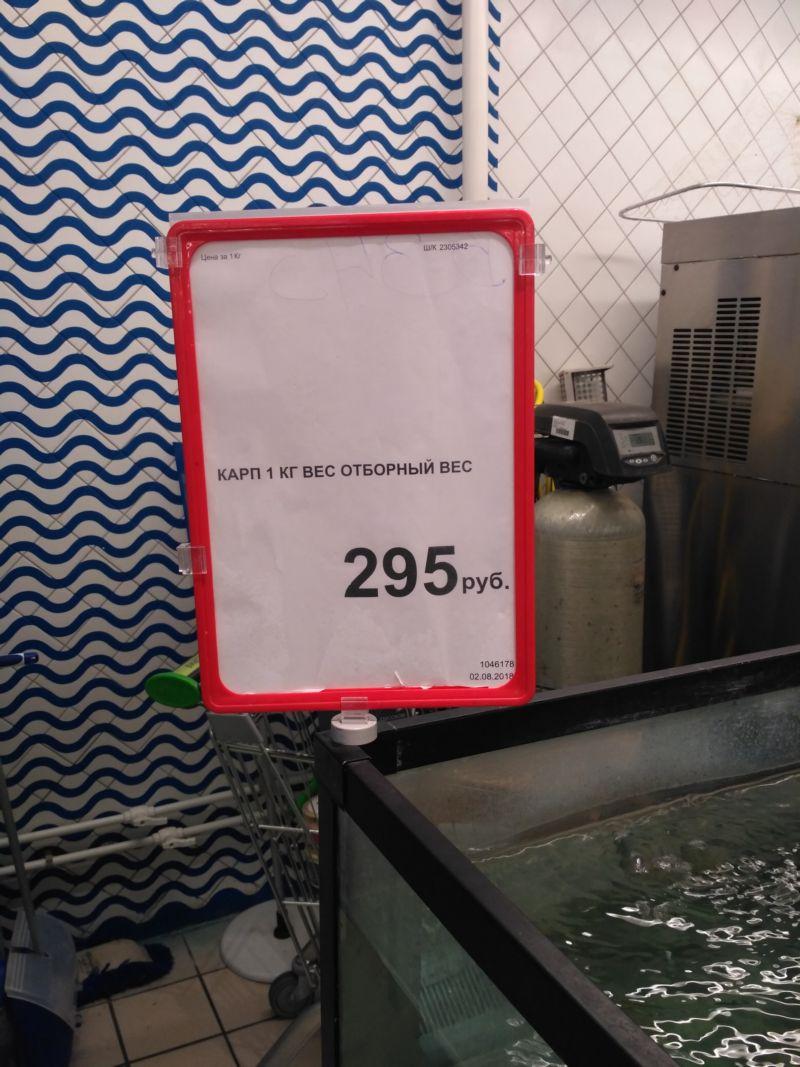 Цена: карп 1 кг вес отборный