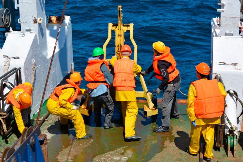 Более 6 900 видов гидробионтов в российской зоне дальневосточных морей обнаружили ученые Дальневосточного федерального университета (ДВФУ) и Дальневосточного отделения Российской академии наук (ДВО РАН)