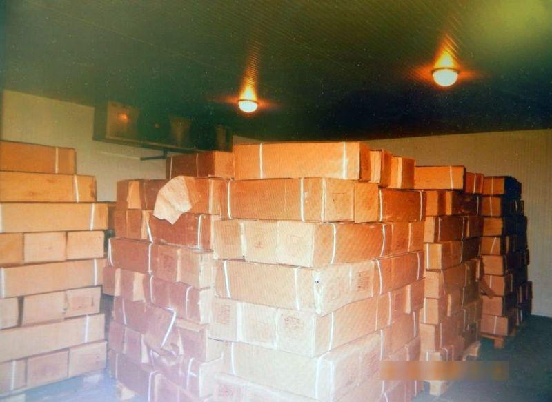 Инспекторы Россельхознадзора в Псковской области обнаружили «лишние» коробки в партии замороженной скумбрии